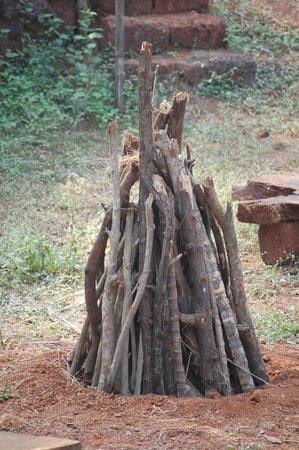 Amrutes' Nisarga Sahavas : view from the log house