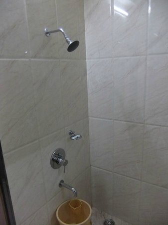 Hotel Oberoi : Shower in our room (203)