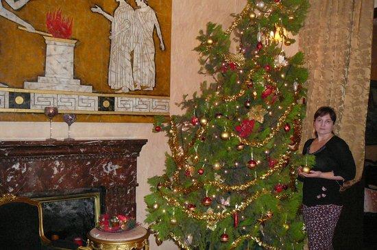 Acropolis Museum Boutique Hotel: В холле. Как раз после Нового года.