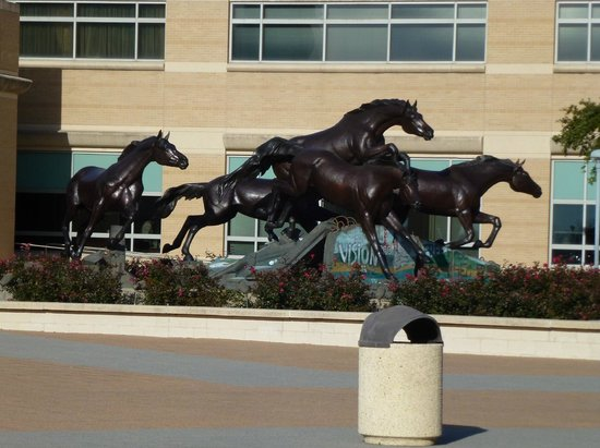 George Bush Presidential Library and Museum: The Horses