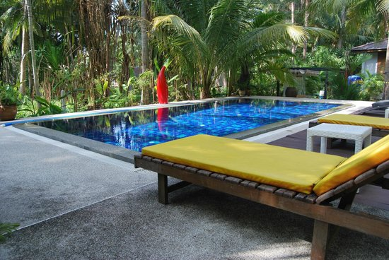 Coconut Lane Villas: Pool