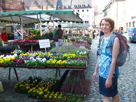 Münsterplatz: Blumen