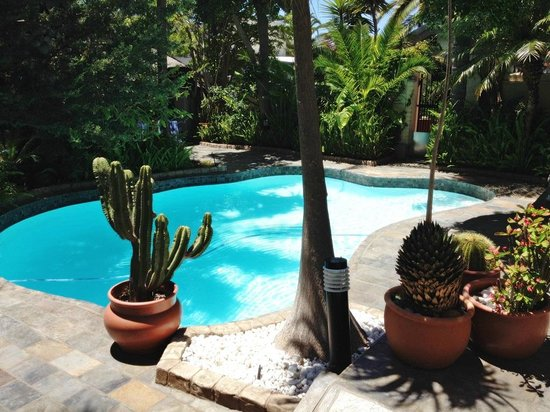 Brenwin Guest House : Nice landscaped pool area