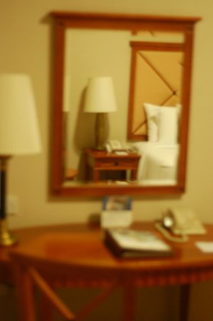 Al Diar Capital Hotel: view with the mirror gives you an idea