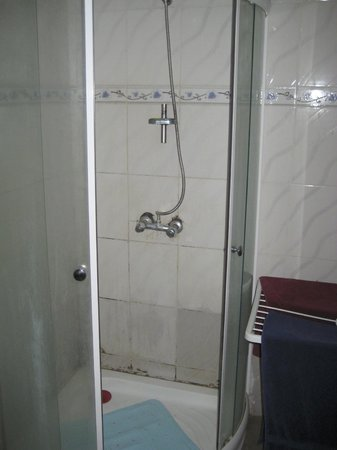 SenegalStyle Bed & Breakfast: Shower in guest bathroom