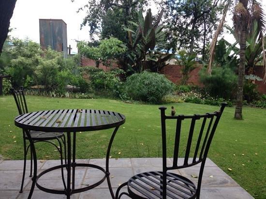 Ballantynes Lodge : Garden