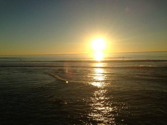 Ocean Beach Hotel: view
