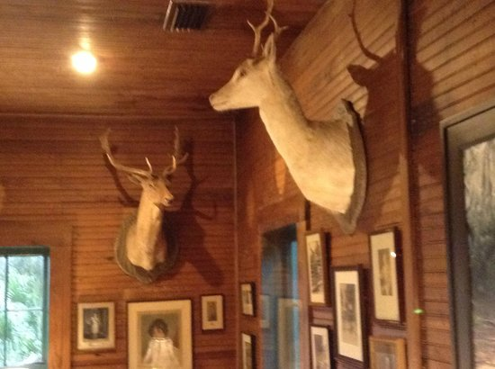 The Lodge on Little St. Simons Island : View of main lodge decor