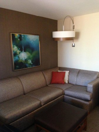 Hyatt Place Omaha Downtown Old Market: Couch area in the room