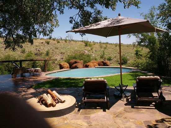 Tuningi Safari Lodge: Elefanti in piscina