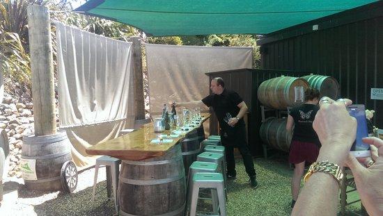 Waiheke Island Wine Tours: peacock winery was fun