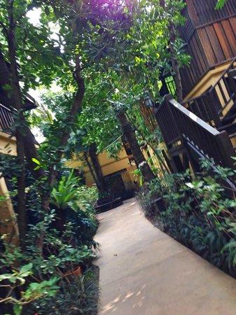 Buri Rasa Village Samui: территория отеля