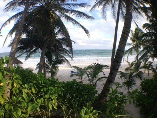 Hotel Cabanas Tulum : Beach view from Cabana