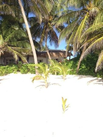 Hotel Cabanas Tulum : Cabanas from Beach