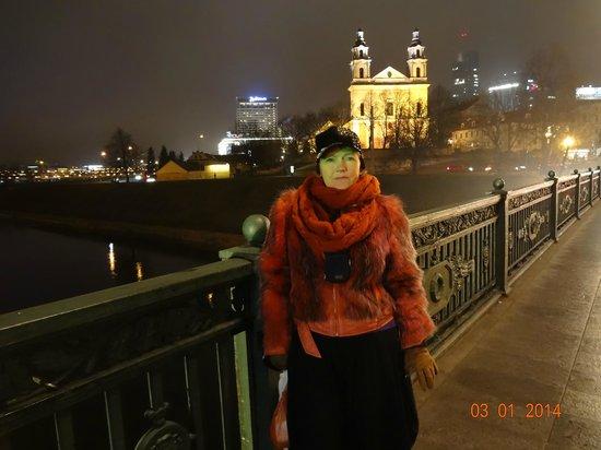 Holiday Inn Vilnius: с одной стороны моста - центр, с другой - отель.