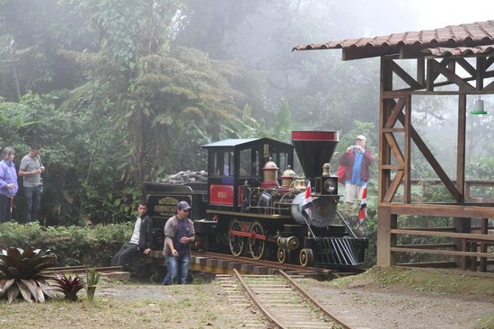 Monteverde TrainForest: Turntable