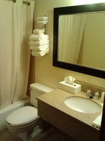Baymont Inn & Suites Dubuque: bathroom