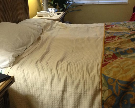 GullWing Beach Resort: Unit #804 needs mattress replacement in master suite.  Note the sagging.