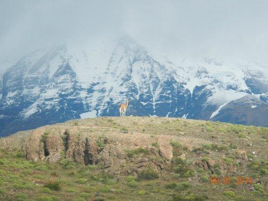 Tierra Patagonia Hotel & Spa: vista proximidades do hotel