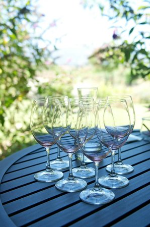 Frog's Leap Winery: wine glasses