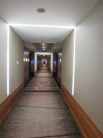 Radisson Hotel & Conference Centre Calgary Airport: Hallway to rooms