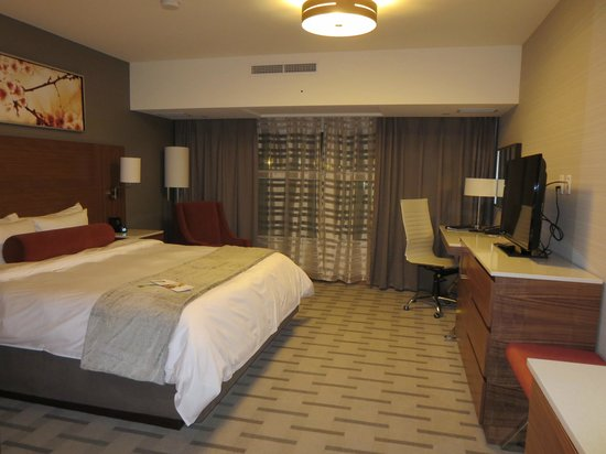 Radisson Hotel & Conference Centre Calgary Airport: Room - King