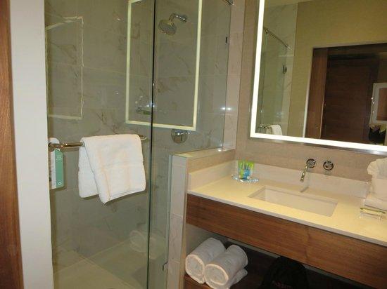 Radisson Hotel & Conference Centre Calgary Airport: Bathroom