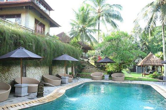 Hotel Villa-Ubud : Piscina