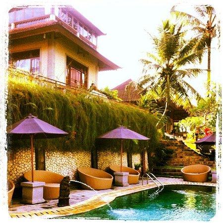 Hotel Villa-Ubud: Piscina