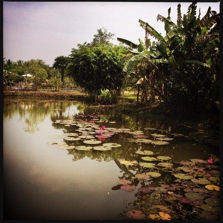 Battambang Resort: Lake
