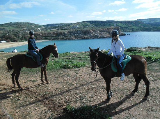 Golden Bay Horse Tonic - Foto di Golden...