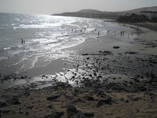 Hotel Fuerteventura Playa: Spiaggia annessa all'hotel