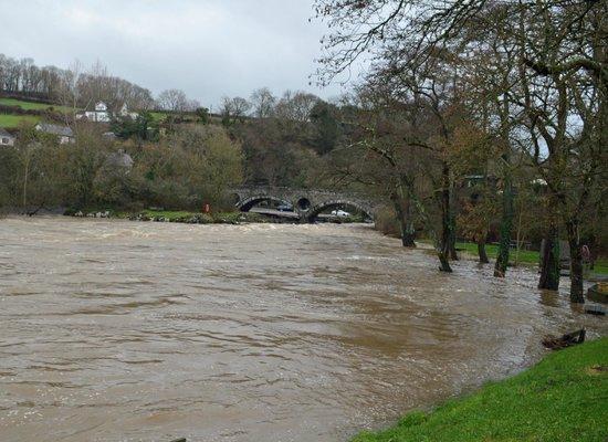 Cenarth Falls and Car Park: High river at Cenarth
