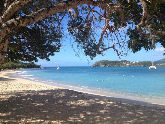 أنتيجول ياكت كلوب مارينا: Pigeon Beach