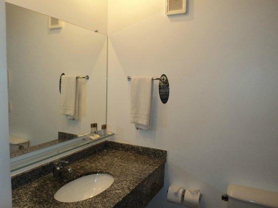 Tulip Inn Santa Felicidade: banheiro