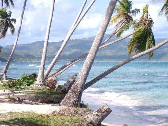 Grand Paradise Samana: plage de l hotel