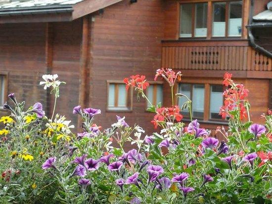 Europe Hotel & Spa: Flowers in bloom :) (late summer)