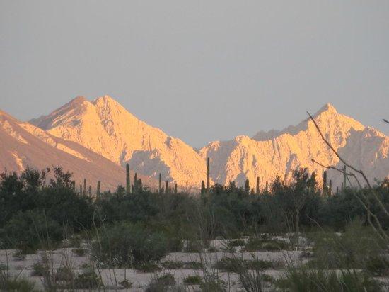 Cabeza Prieta National Wildlife Refuge: Beautiful view at Tinajas Altas