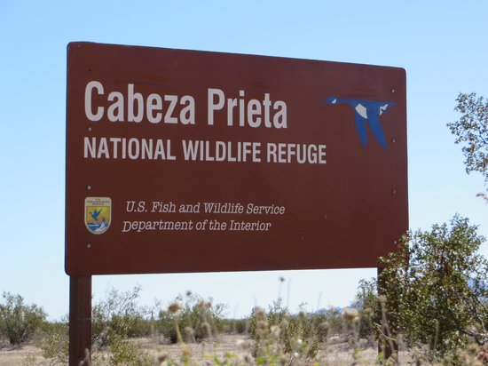 Cabeza Prieta National Wildlife Refuge
