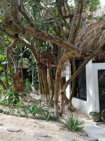 Luv Tulum: Außenbereich / Frühstücksbereich