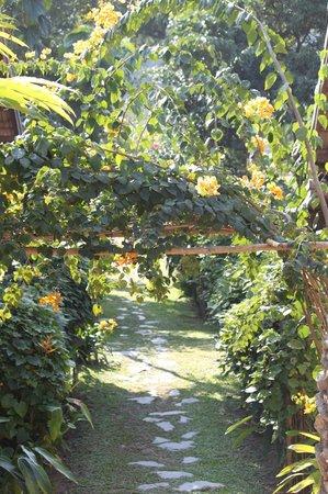 My Dream Boutique Resort: Lovely garden