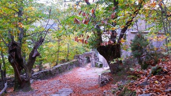 Parada de Sil, Spain: in Autumn