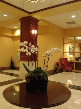 Renaissance Charlotte Suites Hotel: Real orchids in elevator lobby