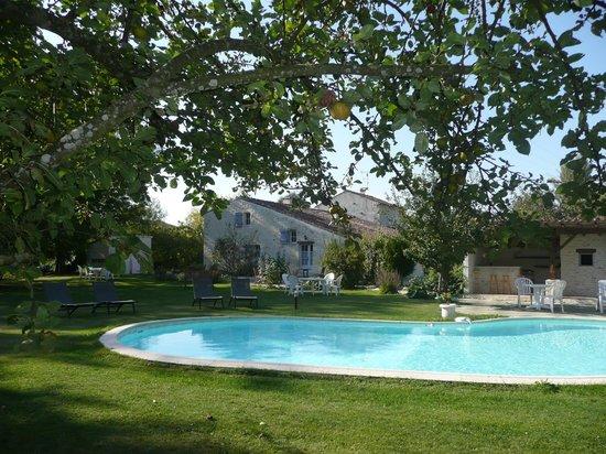 Le Clos du Plantis : Espace détente près de la piscine