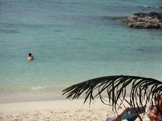 Pearl Beach Bungalow: beautiful beach