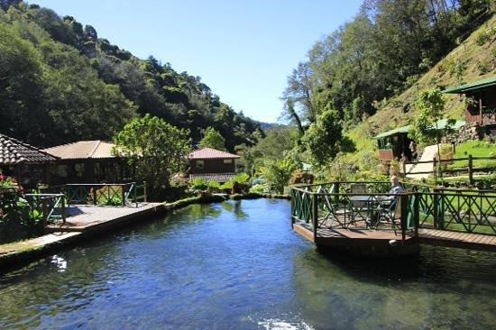 Trogon Lodge San Gerardo de Dota: view from the restaurant
