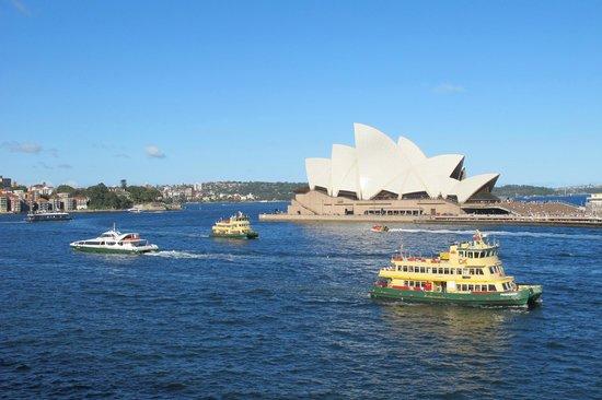 Sydney Ferries: Sydney ferry