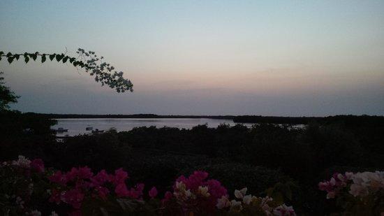 Hotel Keur Saloum: Sunset over the delta