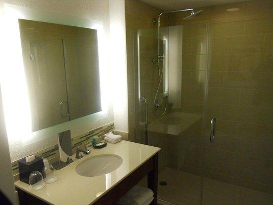 The Westin Houston Memorial City : Bathroom of standard room