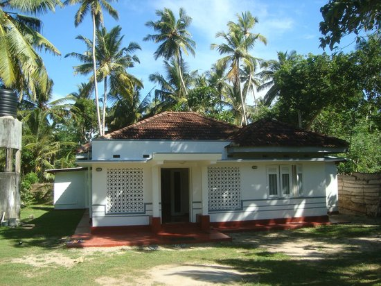 Midigama, ศรีลังกา: Senya Guest House